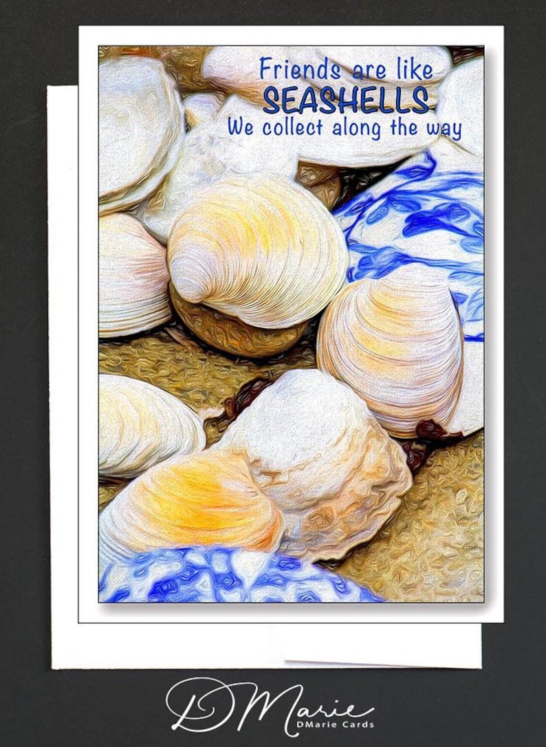Seashell Box of 8 Cards  Friends are like Seashells  The image 0