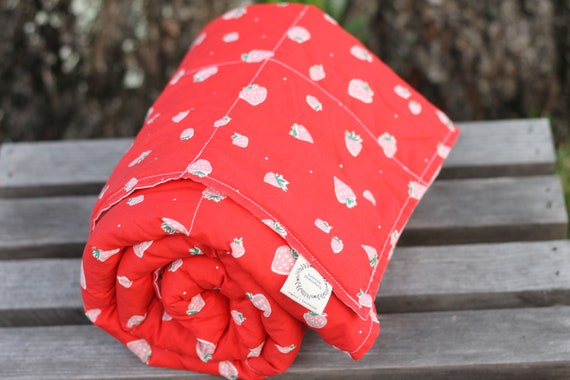 Ready To Ship!! Child's Organic Weighted Blanket, 5lbs,  Glass Beads, Strawberries and Pink, Weighted Blanket, Sensory Blanket, Kids Gift
