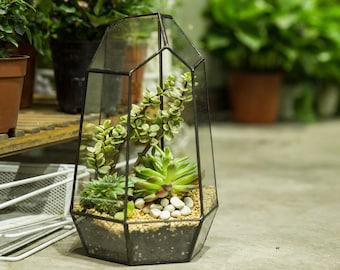 NCYP Geometric Glass Terrarium Irregular Tall Planter Succulent Cacti Fern Flower Pot Container Tabletop Bowl Bonsai Centerpiece