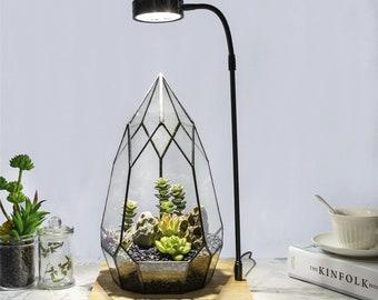 NCYP Tabletop Natural  Wood Board LED Succulents Grow Light Display Indoor  USB 10W for Geometric Glass Terrarium Succulent Fern Bonsai
