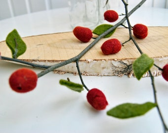 Rosehip branches with felt fruits