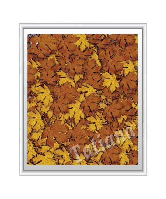 Fall Leaves Digital Printable Wall Art Autumn Background Poster Seasons Home Decor Commercial Use