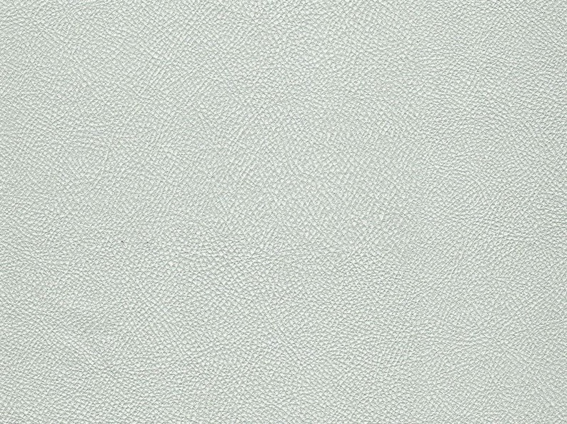 Synthetic leather silver ideal for bags etc. image 0