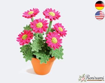 Crochet pattern chrysanth • pot flower • Renirumi