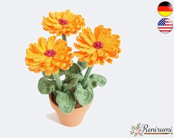Crochet pattern gerbera • pot flower • Renirumi
