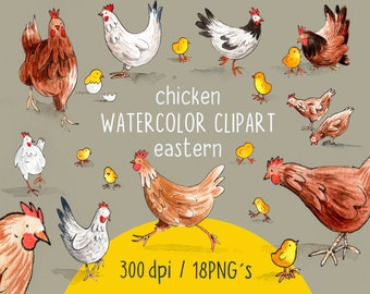WATERCOLOR CLIPART, chicken clipart, easter time, chicken watercolour set, png files, clip art, digital