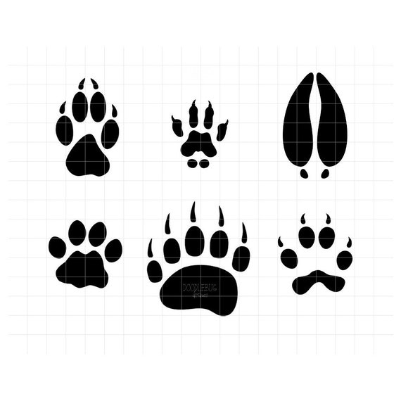 graphic about Printable Animal Tracks identify Animal Footprints SVG Clipart Woodland Animal Songs Printable PNG and Scalable Vector Graphics
