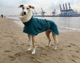Greyhound coat with belly, softshell petrol-mottled, lined with cotton teddy plush, 5 sizes