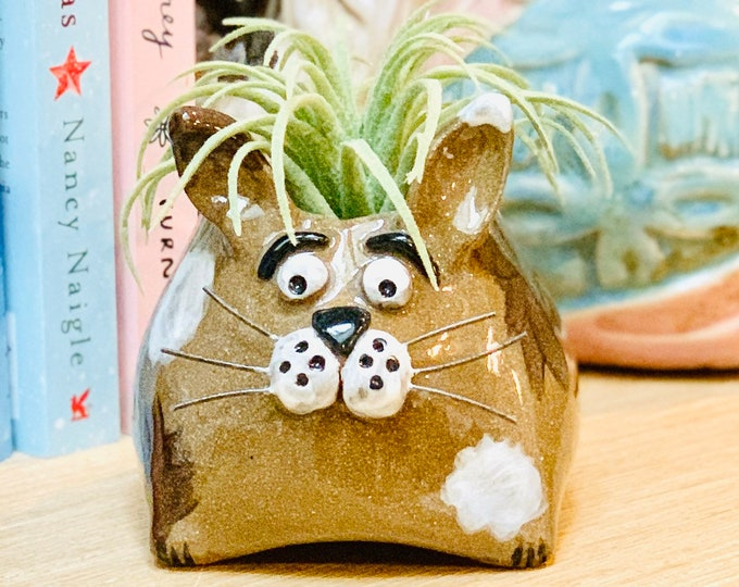 Brown Clay Bunny Ceramic or Pottery Animal Bowl for Succulents, Change, as a Vase or for Display