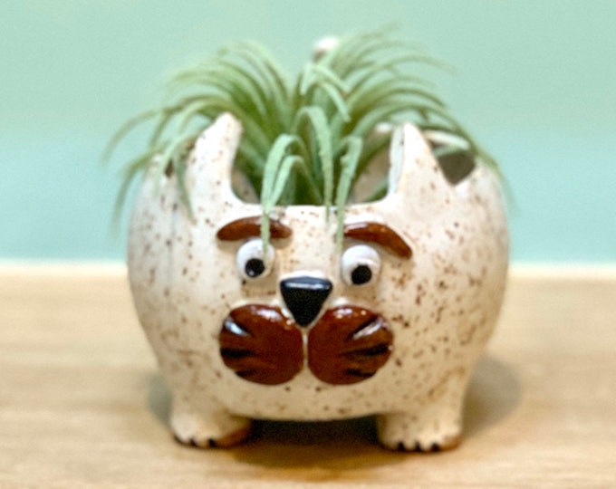 White Speckled Cat Ceramic or Pottery Animal Bowl for Succulents, Change, Food, Candles, Trinkets or Jewelry