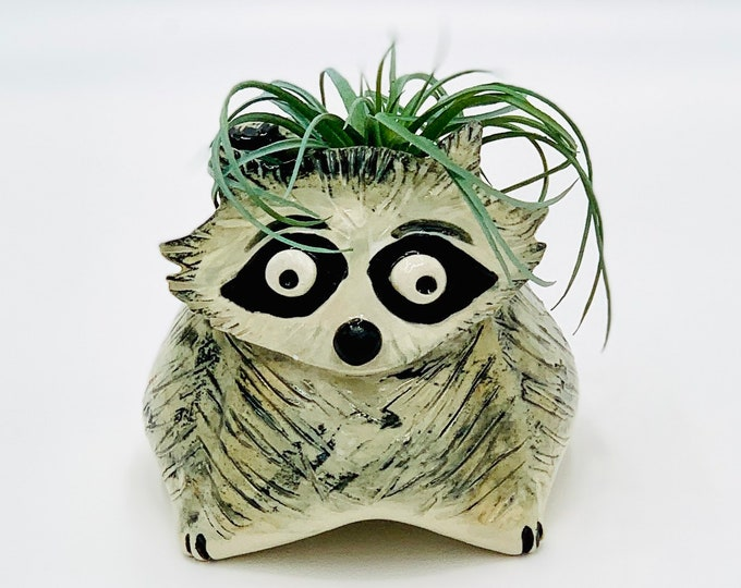 Raccoon Ceramic or Pottery Animal Bowl for Succulents, Change, Food, Candles, Trinkets or Jewelry in White Clay
