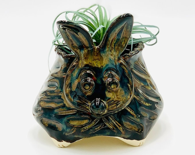 Rabbit Bowl for Succulents in Black and Bronze Glaze and White Clay