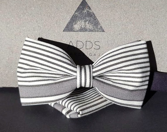 Set bow tie and pocket cloth bow tie and handkerchie