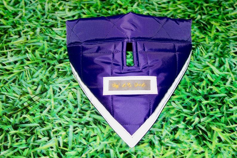 Purple SafetyReflectiveAdjustable Dog Bandana with Gap for TagLead