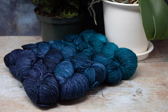 Malabrigo - Worsted - Paris Teal 5 Skein Set