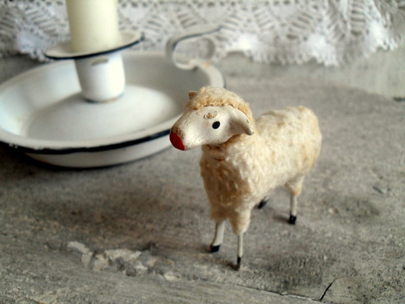 Old beautiful wool sheep, from the Ore Mountains
