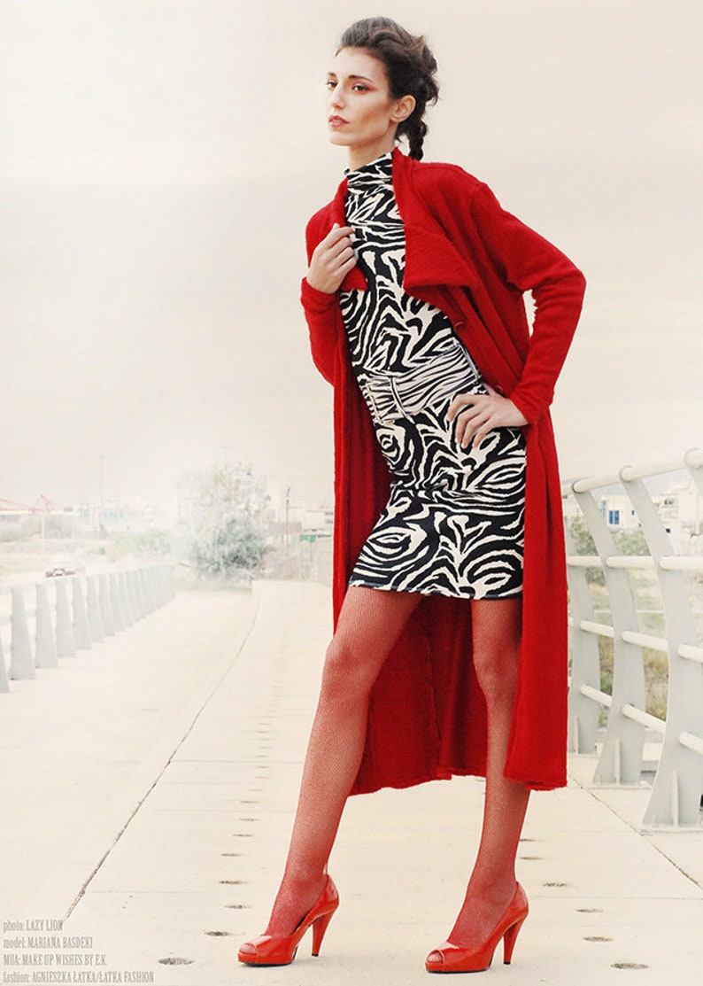 Zebra dress with mandarin collar