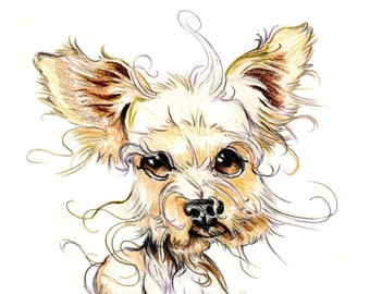 Yorkshire Terrier caricature, dog portrait printed in a signed and limited edition. Art print based on an original drawing