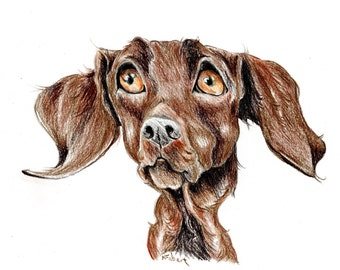 Labrador caricature, special portrait printed in a signed and limited edition. Art print based on an original drawing