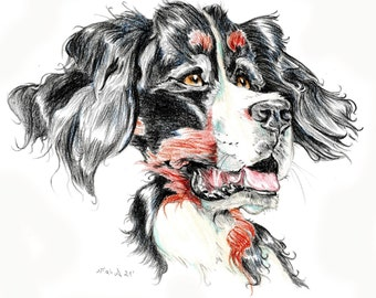 Bernersennen caricature, dog portrait printed in a signed and limited edition. Art print based on an original drawing