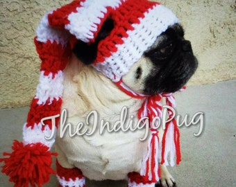 7397bd4b8dd Candycane Hat and legwarmers-pugs-pug-christmas-pet-costume