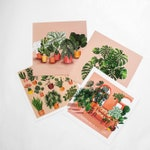POSTCARDS/ POSTKARTEN Home is where my plants are - Set of 4 148 x 148 mm