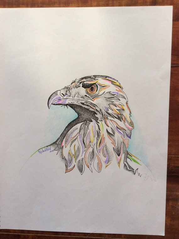Eagle Head American Wildlife Wall Art Print