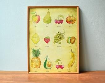 Poster Fruit Poster- Kitchen Poster, Vintage Poster, Poster, Fruit Print, Poster Kitchen,Fruit Illustration, Healthy