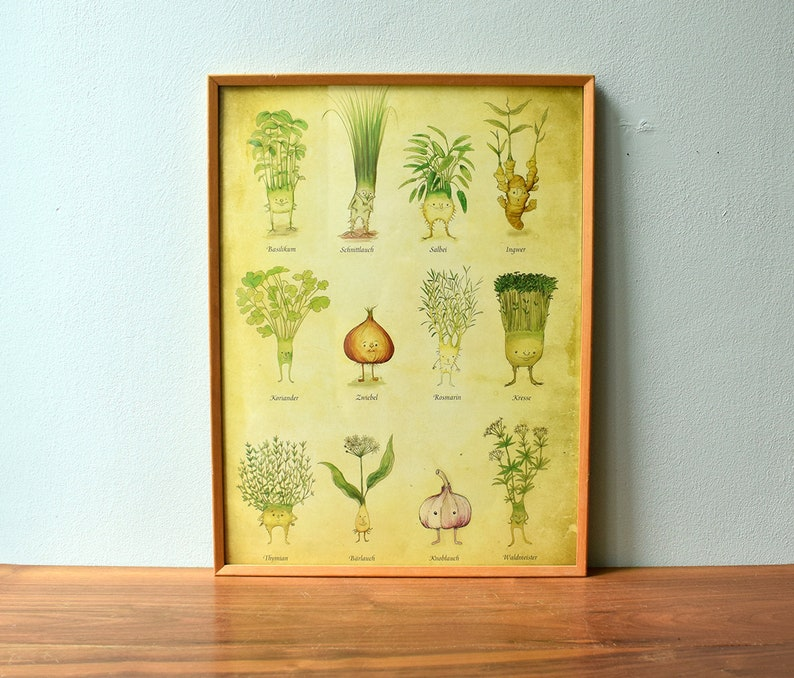 Poster herbal poster  kitchen poster vintage  herbalism image 0