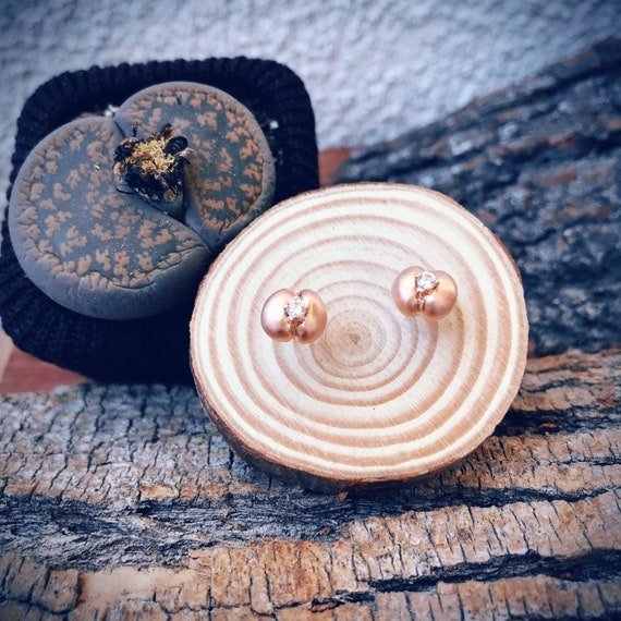 Living Stones Stud Earrings (Rose Gold Vermeil) Sterling Silver organic flower seed jewelry earth lover cactus succulent