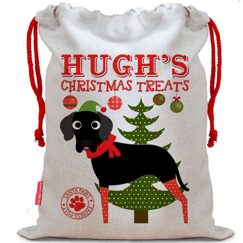 Personalised Dog Santa Sack GREAT DANE Christmas Bag Xmas Treat Gift CDS16