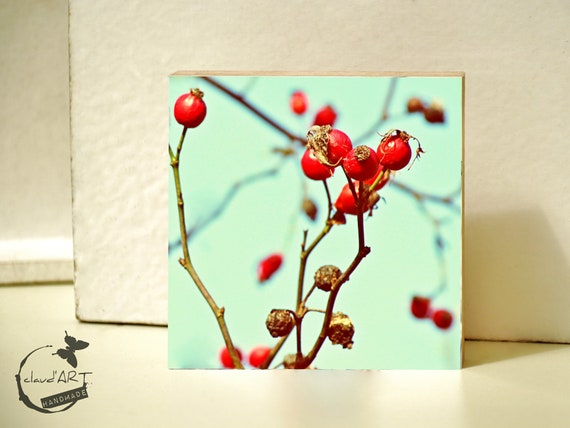 "Photo on wood 10x10 - ""Berries on branches"" No.05"