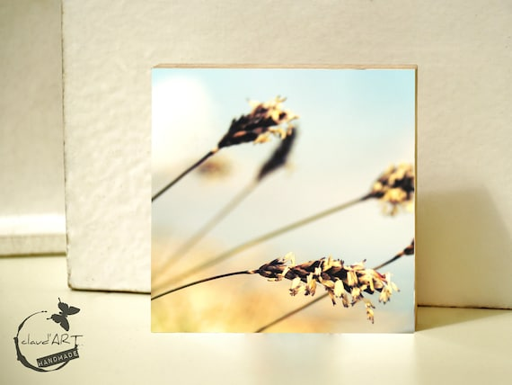 "Photo on wood 10x10-""Summer Meadow"" No. 16"