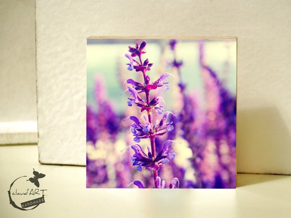 "Photo on wood 10x10-""Summer Meadow"" No. 08"