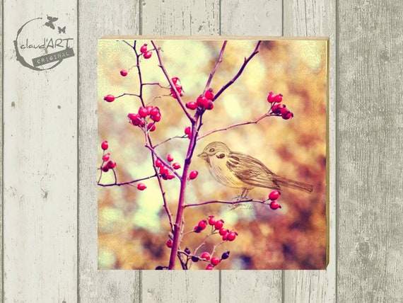 "Photo on wood 10 x 10 cm-daydreamer ""sparrow"""