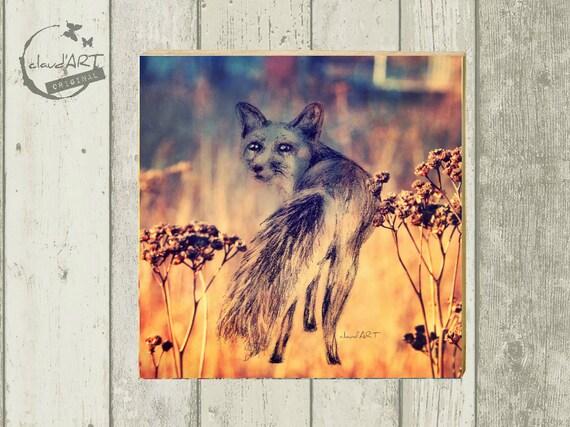 """Photo on wood 10 x 10 cm-daydreamer """"Fox"""""""