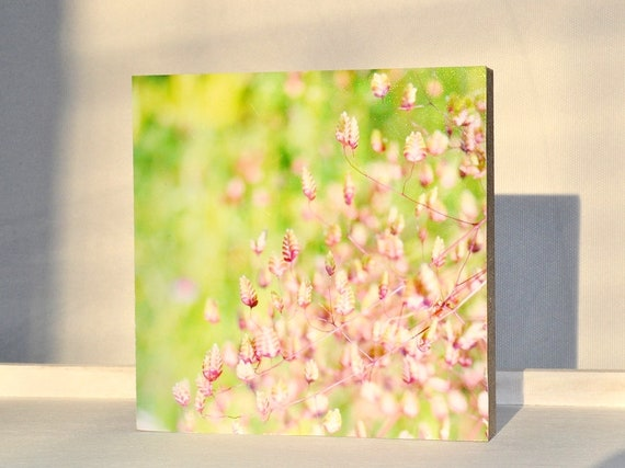 "Photo on Wood 10 x 10 cm-""Grasses Summer Meadow"" No.18"