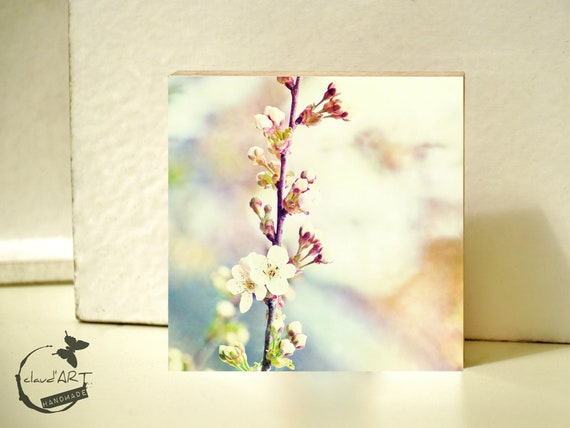 "Photo on wood 10x10-""Spring"" no. 1"