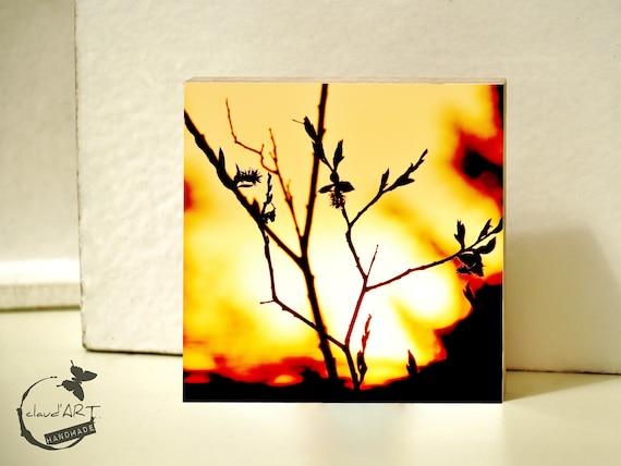 "Photo on wood 10x10-""Summer Meadow"" No. 18"