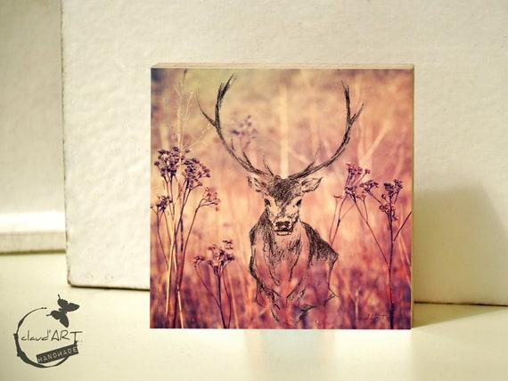 "Photo on wood 10 x 10 cm-daydreamer ""deer"""