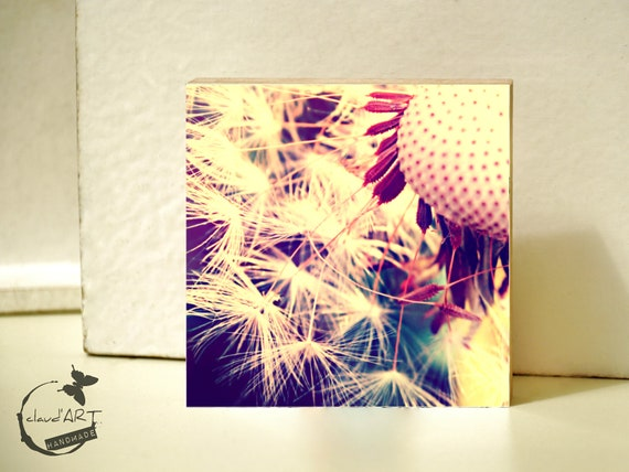 "Photo on wood 10x10-""Summer Meadow"" No. 13"