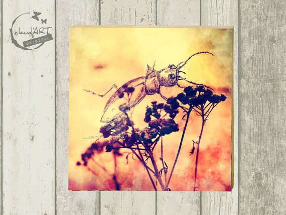 "Photo on wood 10 x 10 cm-daydreamer ""Grille"""