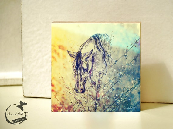 "Photo on wood 10 x 10 cm-daydreamer ""horse"""