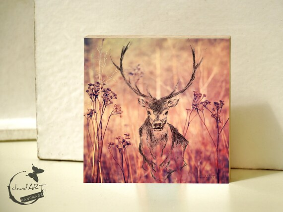 "Photo on wood 20 x 20 cm-daydreamer ""deer"""