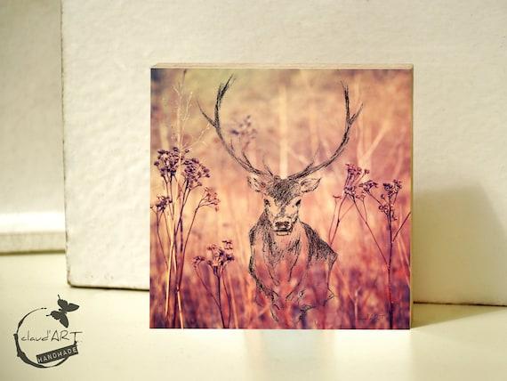 "Photo on wood 20 x 20 cm-daydreamer ""deer"""