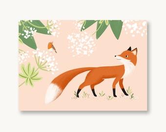 Postcard Robin and Fox