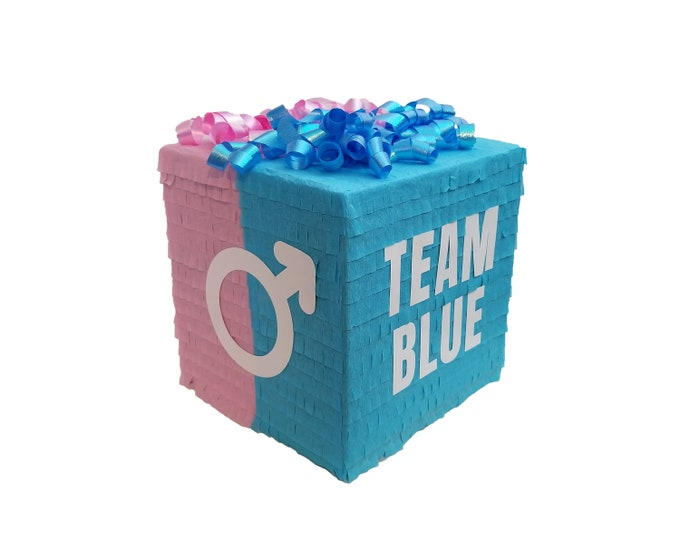 Team Blue + Pink Gender Reveal Pinata