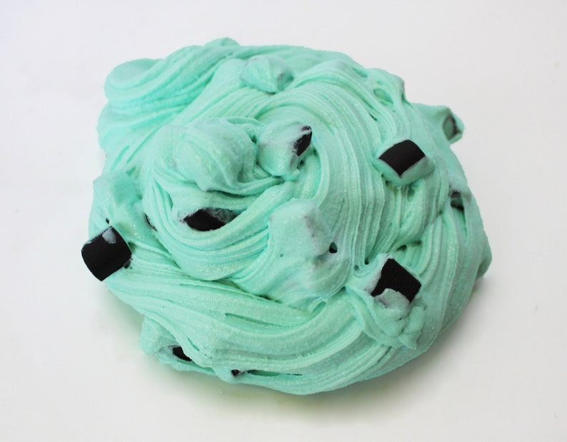 Mint Choco Chip Froyo  Realistic Satisfying Slime  Mint image 0