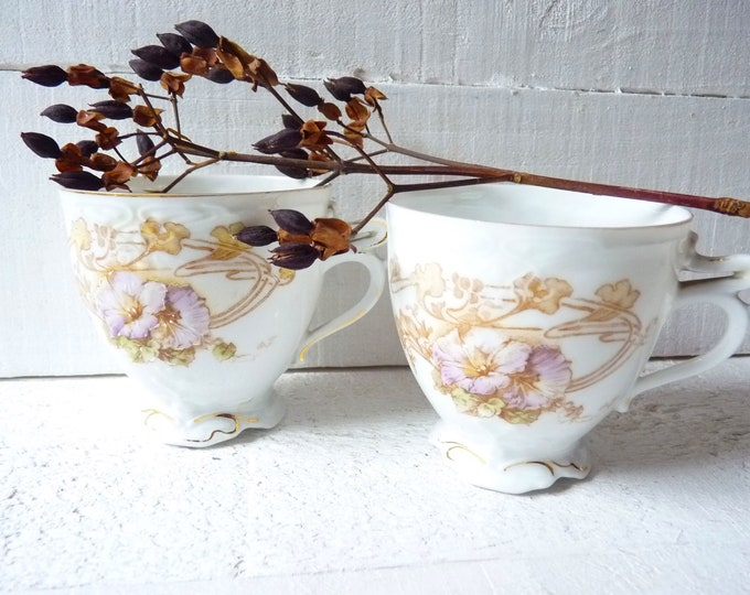 Pair of Art Nouveau Collectible Cups Blush Pink Sepia Brown Pastel Colors Shabby Country House Mug Rack Decoration Floral Decor Victorian