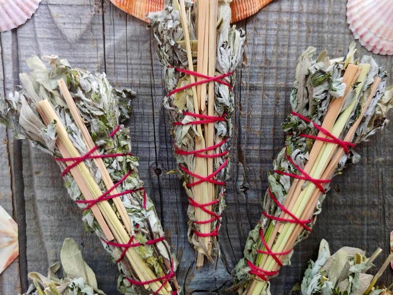 BLOSSOM ~ white Canadian sage smudge stick lemongrass sweet grass black  sage ~ Share love and beauty! Friendship, mutual love, appreciation
